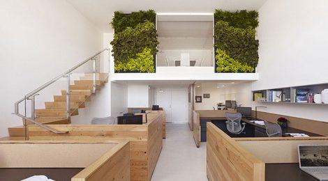提升办公室空气质量:开窗通风、活性炭、净化器和绿植